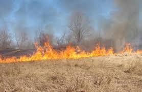 اخماد حريق 300 دونم في عجلون