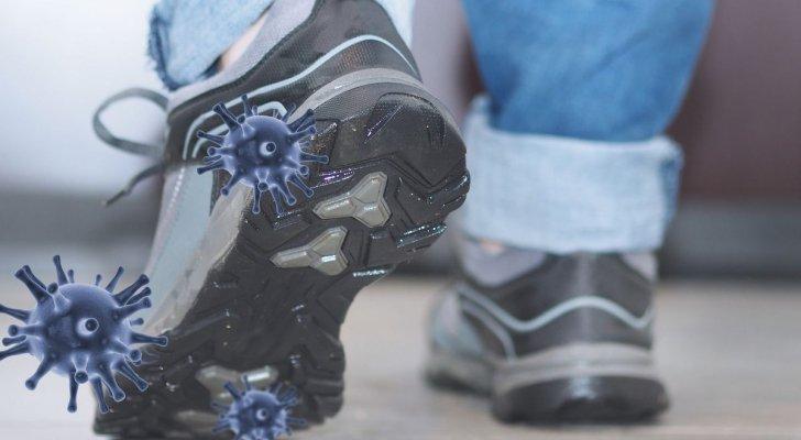 هل ينتشر فيروس كورونا بواسطة الأحذية والذباب المنزلي